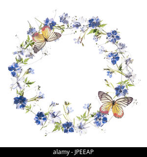 Floral frame with butterfly on white background - Stock Photo