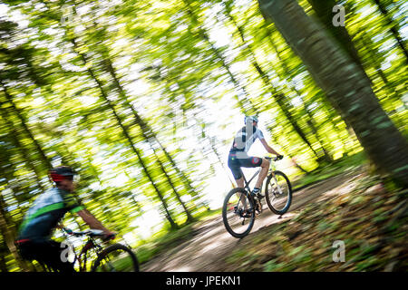 MTB Race Schatzberg Rennen - Diessen am Ammersee, Bavaria, Germany - Stock Photo