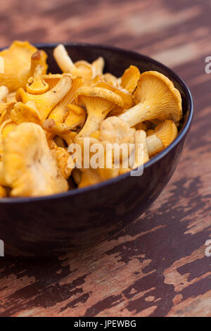 Mushroom Chanterelle. Fresh Raw Mushrooms Chanterelle In Bowl On Old Wooden Painted Table Top View. - Stock Photo