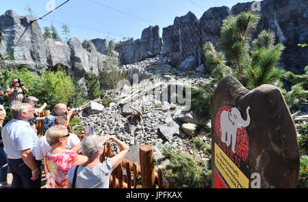 Leipzig, Germany. 1st Aug, 2017. The first visitors admire the newly opened Himalayan landscape enclosure in the - Stock Photo