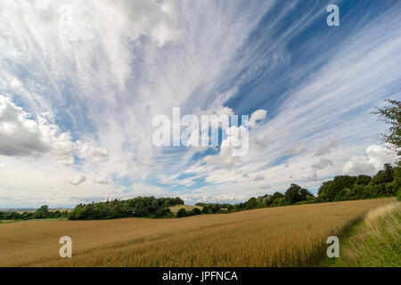 Breamore, West Hampshire, UK, 1st August 2017. High level wispy cirrus fibratus clouds, shaped by strong winds at - Stock Photo