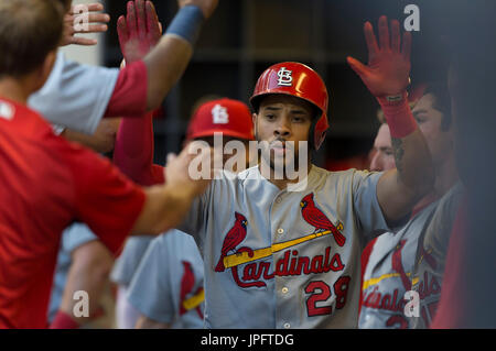 Milwaukee, WI., USA. 1st August, 2017. St. Louis Cardinals left fielder Tommy Pham #28 is congratulated after scoring - Stock Photo