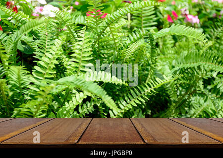Perspective wood window display with Green garden background. Green garden background of Fishbone Fern or Sword - Stock Photo
