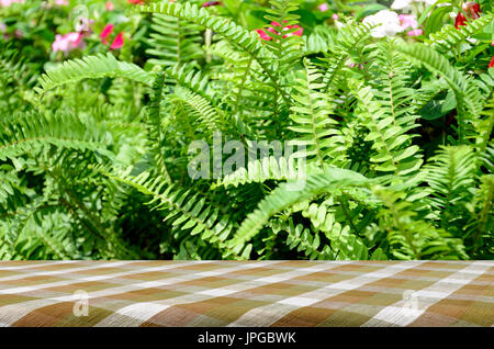 Picnic table with green garden background of Fishbone Fern or Sword Fern (Nephrolepis cordifolia (L.) Presl.) - Stock Photo