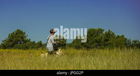 A person walks a dog (berger blanc Suisse) through the country-side on a hot summers day with a perfect blue sky. - Stock Photo