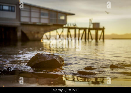 A golden evening at Port Nelson, Nelson, New Zealand - Stock Photo