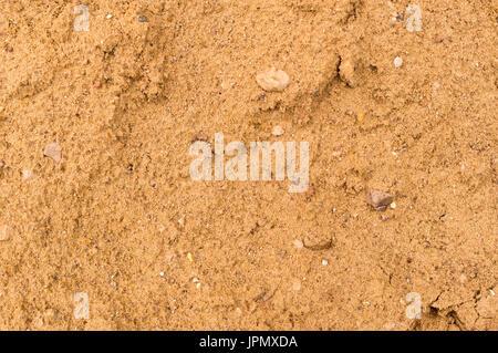 wet beach sand texture. wet yellow sand texture beach background stock photo m