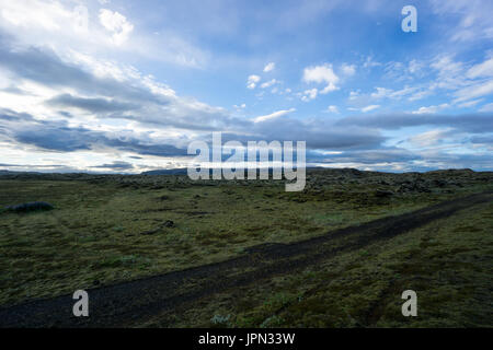 Iceland - Green moss covered lava field at dawn - Stock Photo