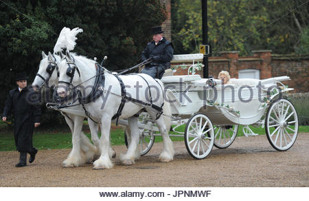 towie-cast-film-their-royal-wedding-theme-finale-they-celebrated-nanny-jpnmwf Towie Cast Film Their Royal Wedding Theme Finale They Celebrated Nanny Pats Birthday At Addington Palace In Croydon She Was The Queen And The Cast Had
