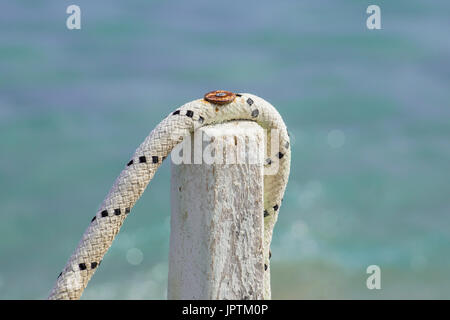 Rope tied to a wooden pole, detail with pillar on the sea pier rusty screw . Close up . - Stock Photo