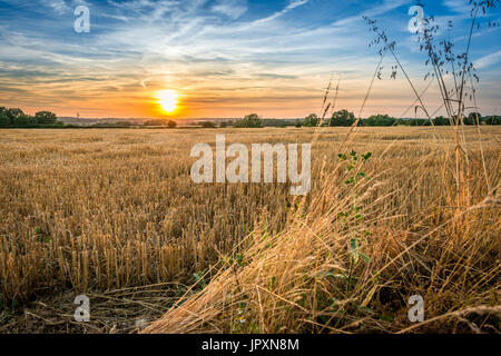 Early evening and the sun begins to set over farmed agricultural land in the Lincolnshire Fens - Stock Photo