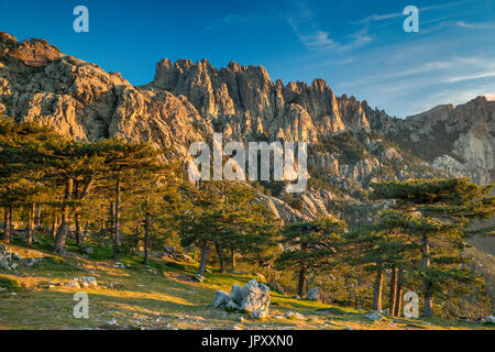 Aiguilles de Bavella, view at sunrise from Col de Bavella pass, Corse-du-Sud, Corsica, France - Stock Photo