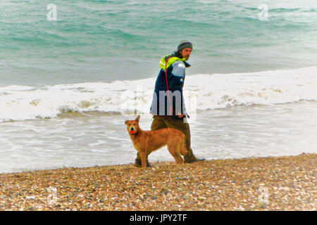 Weymouth, UK. 2nd Aug, 2017. Despite the rain, one man and his dog can still have fun with a ball on Weymouth beach - Stock Photo