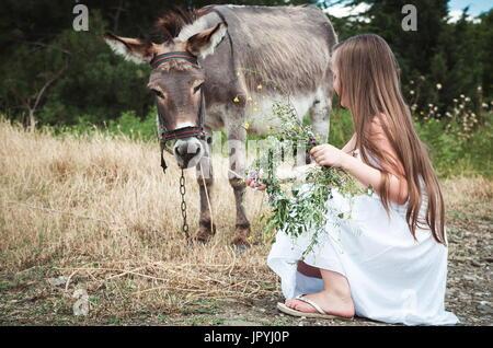 Girl with donkey - Stock Photo