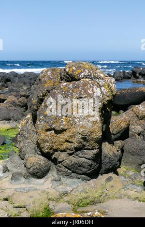 Massive basalt rock on the cost of Giant`s Causeway in Bushmills Antrim Northern Ireland
