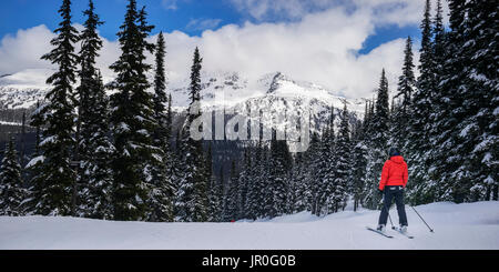 A Female Skier Poses Stands Looking At The Majestic Mountain Scenery At A Ski Resort; Whistler, British Columbia, - Stock Photo