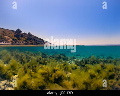 Half underwater in the sea with moss. - Stock Photo