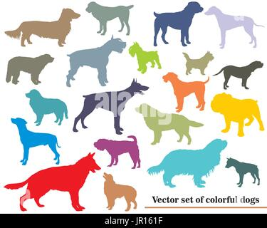 Vector set of colorful isolated different breeds dogs silhouettes on white backround - Stock Photo