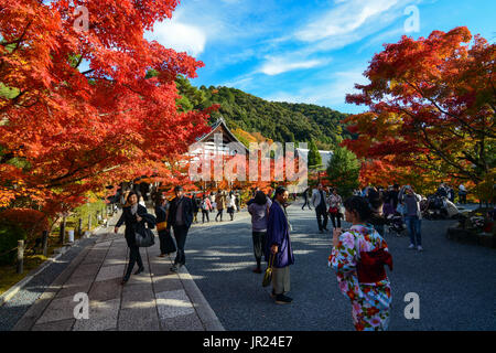 KYOTO, JAPAN - NOVEMBER 16, 2016 - Visitors and foreign tourists enjoy the vibrant colors of fall at Eikan-do Zenrin - Stock Photo