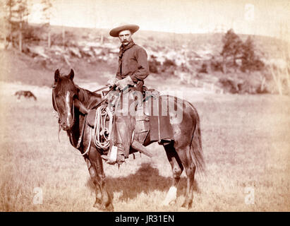 The historic American cowboy of the late 19th century arose from the vaquero traditions of northern Mexico and became - Stock Photo
