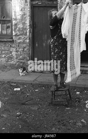 1940s, Merthyr Tydfil, South Wales, lady in apron standing on a wooden stool hanging up wet clothes to dry in the - Stock Photo