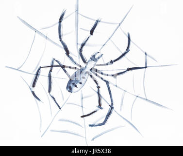 training drawing in suibokuga style with watercolor paints - Spider on the web on white paper - Stock Photo