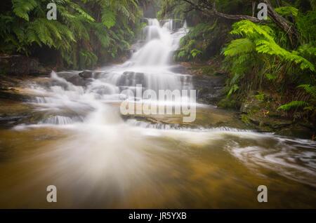 Upper Leura Cascades in full flow after heavy rain in the Blue Mountain, NSW, Australia - Stock Photo