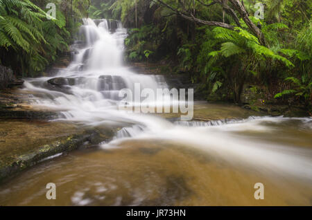 Upper Leura Cascades in full flow after heavy rain in the Blue Mountain, NSW, Australia - Stock Photo