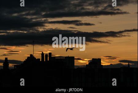 Leith, Edinburgh, Scotland, UK, August 3rd 2017. A warm orange sunset  over Leith skyline rooftops - Stock Photo