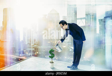Business Man pouring water on dollar shaped tree . Business growth and entrepreneurship concept. - Stock Photo