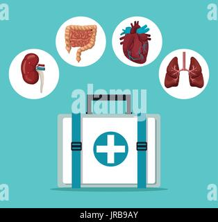 color background with first aid box with icons circular frame intern organs human body - Stock Photo