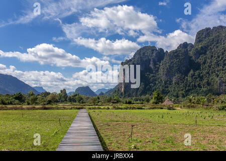 Wood bridge and paddy field rice in Vang Vieng, Laos - Stock Photo