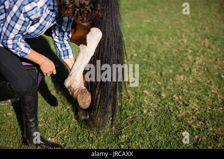 Man cleaning horse hoof in the ranch - Stock Photo