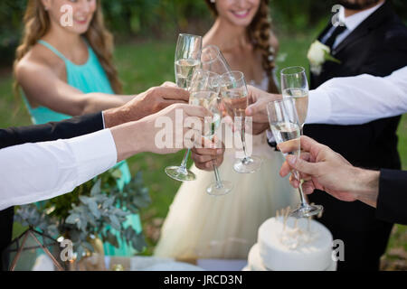 Newly married couple and guests toasting glasses of champagne in park - Stock Photo
