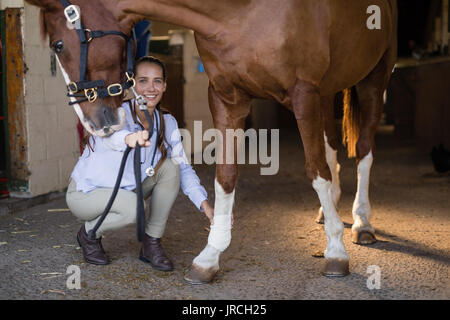 Portrait of female vet examining horse in stable - Stock Photo