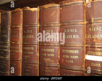 Multiple worn, leather bound books in a row on a bookshelf in a special collection library, damage to the leather - Stock Photo
