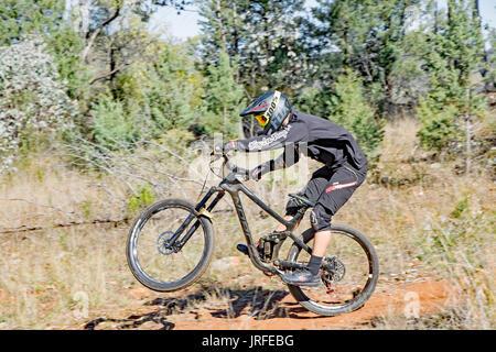 A Mountain Bike Racer landing from a jump. Mount Borah NSW Australia. - Stock Photo