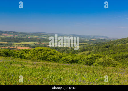 Looking north from the summit of Cothelstone Hill on the Quantock Hills towards Vale of Taunton Deane and Exmoor, - Stock Photo