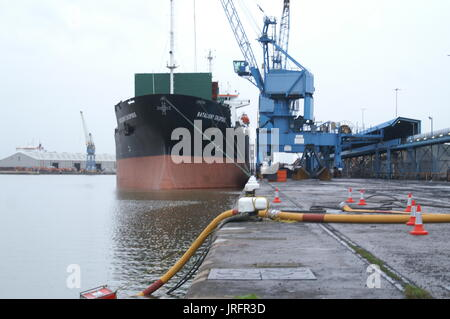 cargo ship in docked in the port of hull - Stock Photo