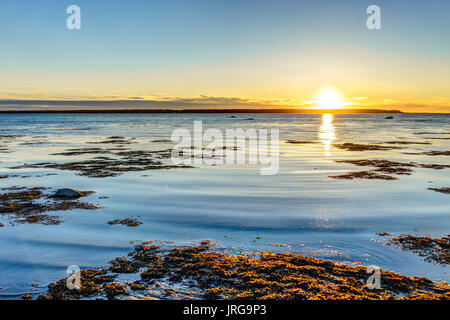 Sunset in Rimouski, Quebec by Saint Lawrence river in Gaspesie region of Canada with seaweed - Stock Photo