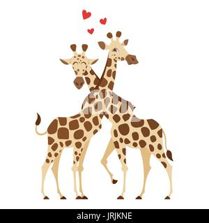 Vector cartoon style illustration of two giraffes. Isolated on white background. - Stock Photo