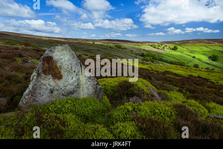 North York Moors overlooking the dale with fields, farmland, trees, and heather  under a bright cloudy sky near - Stock Photo