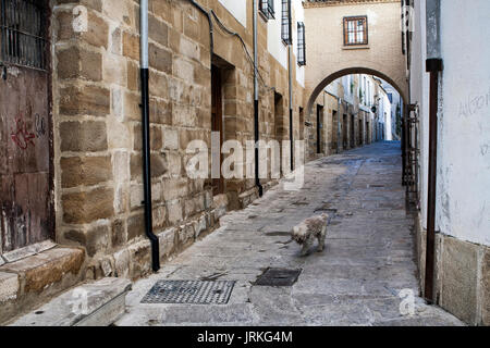 Typical Street of the world heritage city in Baeza, Street Barbacana next to the clock tower, Baeza, Spain - Stock Photo