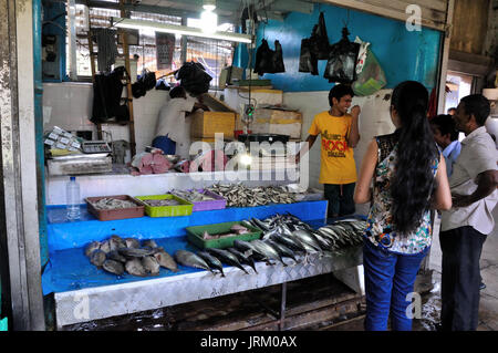 Shop selling fish in Kandy, Sri Lanka - Stock Photo