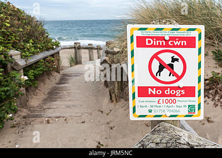 No dogs on beach sign, Pwllheli, Lleyn Peninsula, Wales, UK - Stock Photo