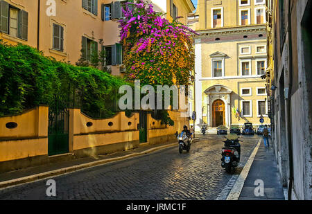 Back street in Rome with a colorful bougainvillea plant with pink and orange flowers on the side of a building with - Stock Photo