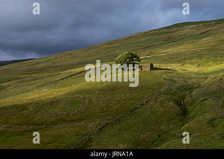 Barn in Dentdale, Yorkshire Dales National Park, North Yorkshire, England UK - Stock Photo