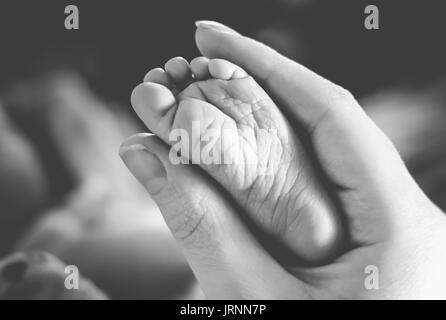 Adult woman holding baby's foot - Stock Photo