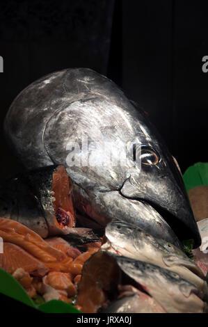 head of tuna fish la boqueria market Barcelona spain - Stock Photo