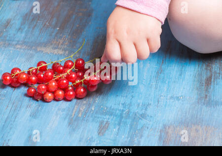 red currants on a wooden background in a hands around all summer blooms - Stock Photo